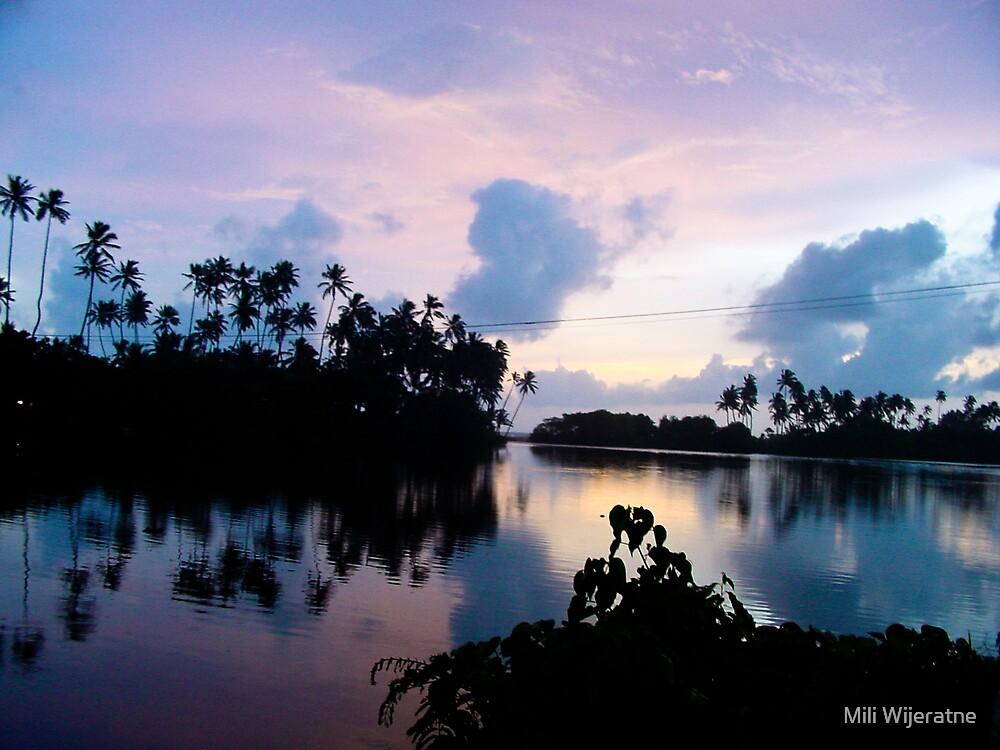 Sunset by Mili Wijeratne