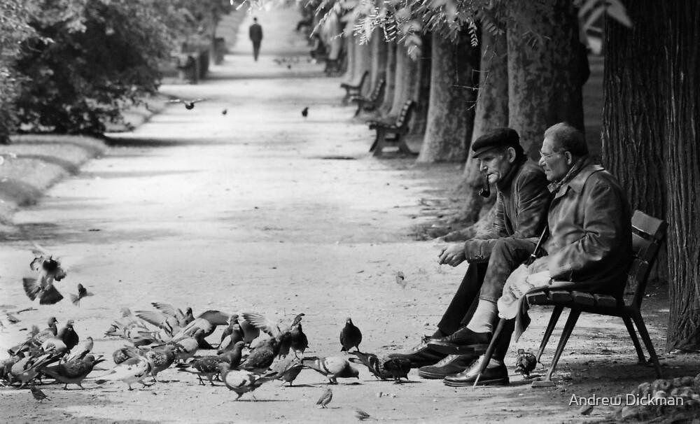 Timeless Paris by Andrew Dickman