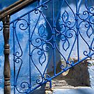 Brown on Blue by eyeshoot
