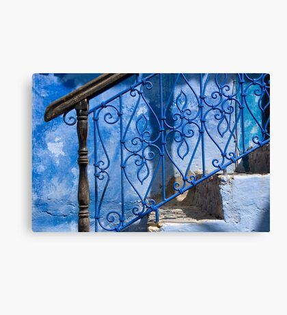 Brown on Blue Canvas Print