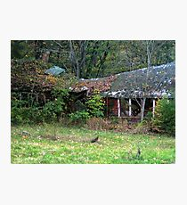 Old Haunted Abandonned Building Behind the Ringwood Manor Photographic Print