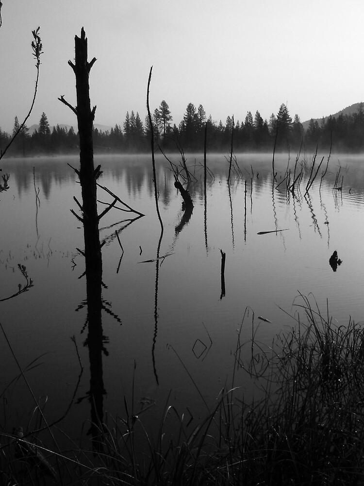 Waldo Pond by Leah77