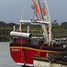 Aquarius, Southwold Harbour by wiggyofipswich