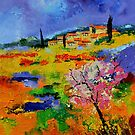 Provence 677170 by calimero