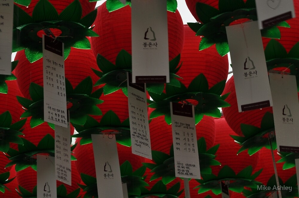 Lucky Red Lanterns in the Rain by Christian Eccleston