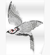 Vector pheasant Poster