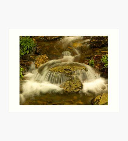 waterfall, Great Smokey Mtns Art Print