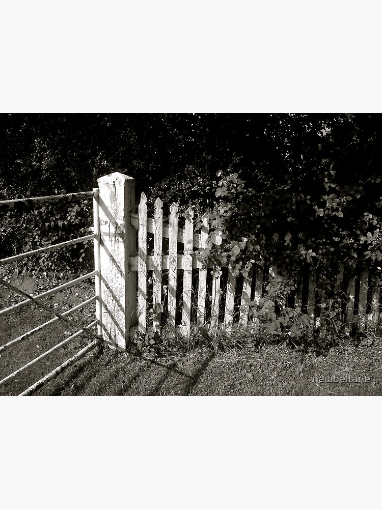 The Fence by newbeltane