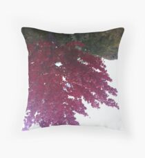 seasons in retrograde Throw Pillow