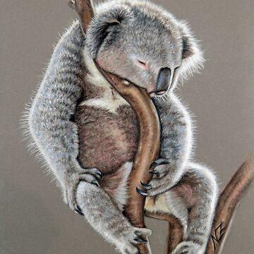 Koala Sleep by ArtsandDogs
