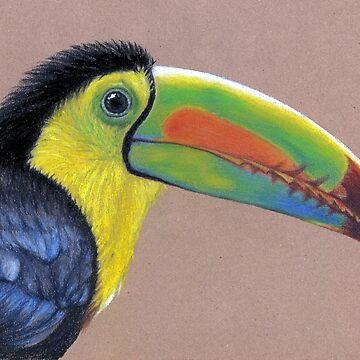 Toucane - Tukan by ArtsandDogs