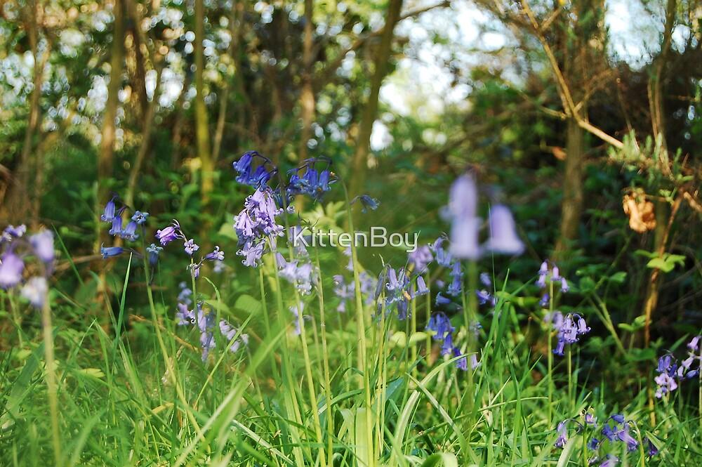 Flowers blue by KittenBoy