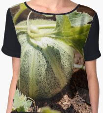 A small green decorative pumpkin with leaves on the ground Women's Chiffon Top