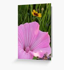 A Study in Pink and Gold Greeting Card
