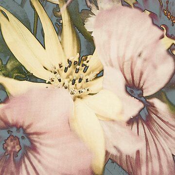 Blumenbouquet... by pASob-dESIGN