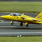 Folland Gnat T1 XR991/XS102 G-MOUR by Colin Smedley