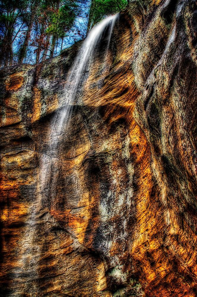 King's Bluff Falls by Scott Ward