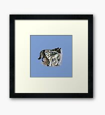 Timber wolf over blue (c) 2017 Framed Print