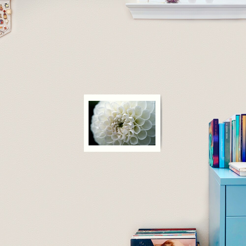 Dahlia in white Art Print