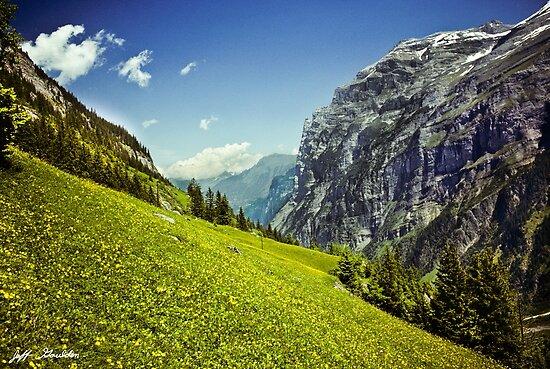 Lauterbrunnental in voller Blüte von Jeff Goulden