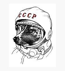 Lámina fotográfica Laika, space traveler