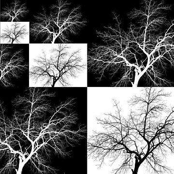 Checkered Trees by Marmadas