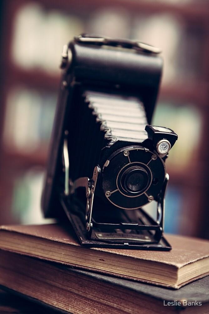 Vintage Folding Camera by PixLifePhoto