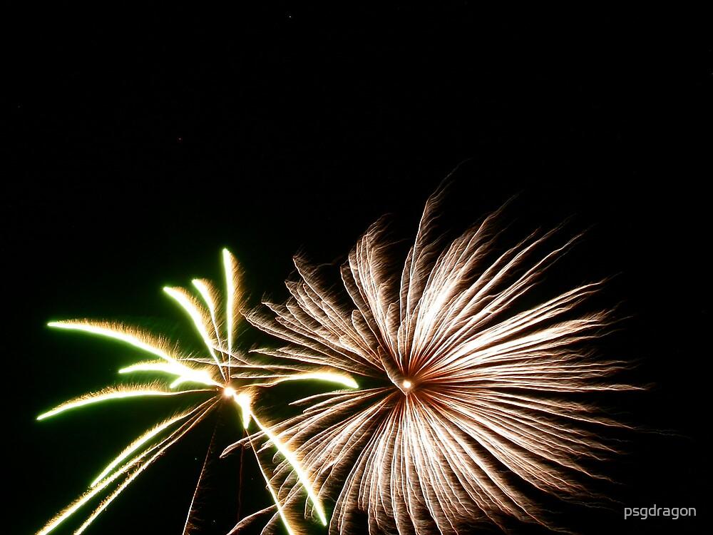 Green & Silver Fireworks Burst by psgdragon