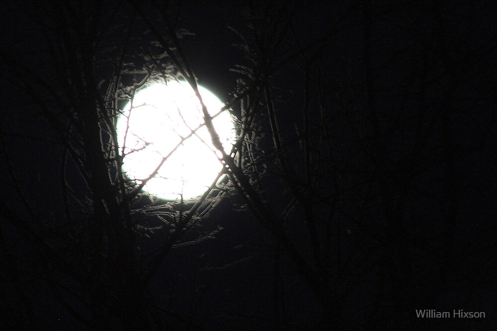 Moon by William Hixson