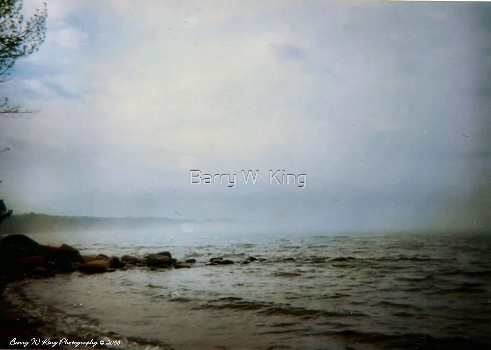 Morning Mist by Barry W  King