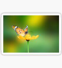 Beautiful Butterfly on a Buttercup Sticker