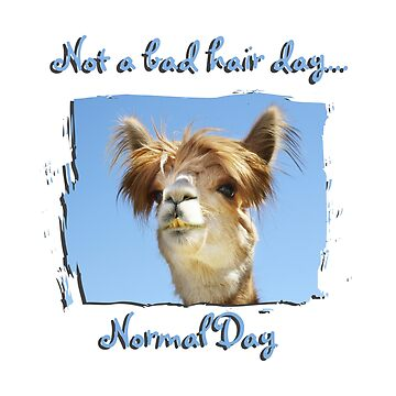 Alpaca Normal Hair Day  by Doty