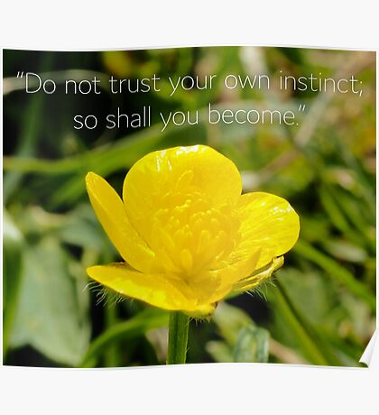 "NDVH ""Do not trust your own instinct..."" Poster"