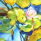 Water lily by bettymmwong