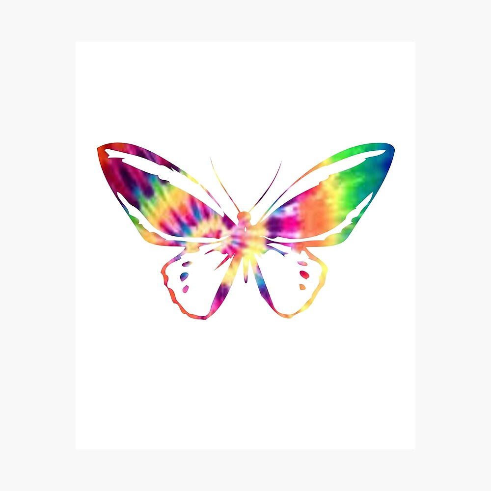 Colorful Butterflies Insects Sticker Vivid Butterfly Stickers ~ Nature Stickers