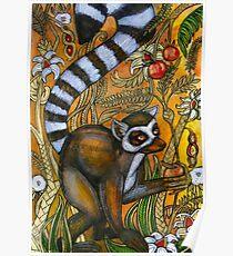 Eden (Ring-Tailed Lemur) Poster