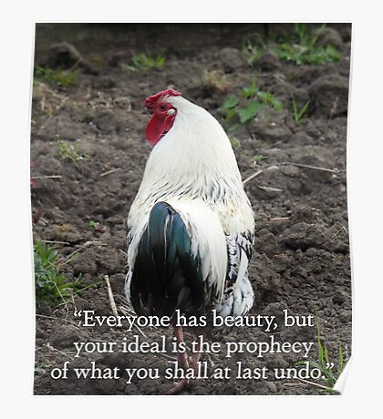 "NDVH ""Everyone has beauty..."" Poster"