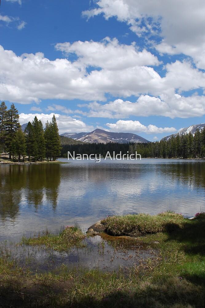 Dog Lake at Yosemite by Nancy Aldrich