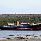SS Kyle, Harbour Grace, Newfoundland by Vickie Emms