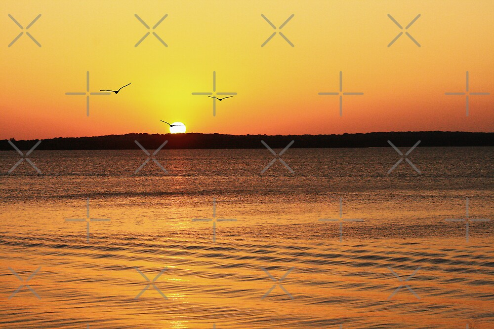 Sunset on Lake Texoma by Mark Rogers