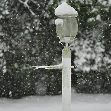 Lamp in Snow, As Is by fotokmcc