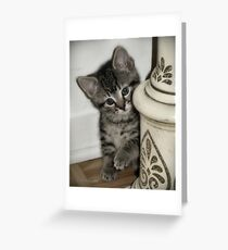 lil' one Greeting Card