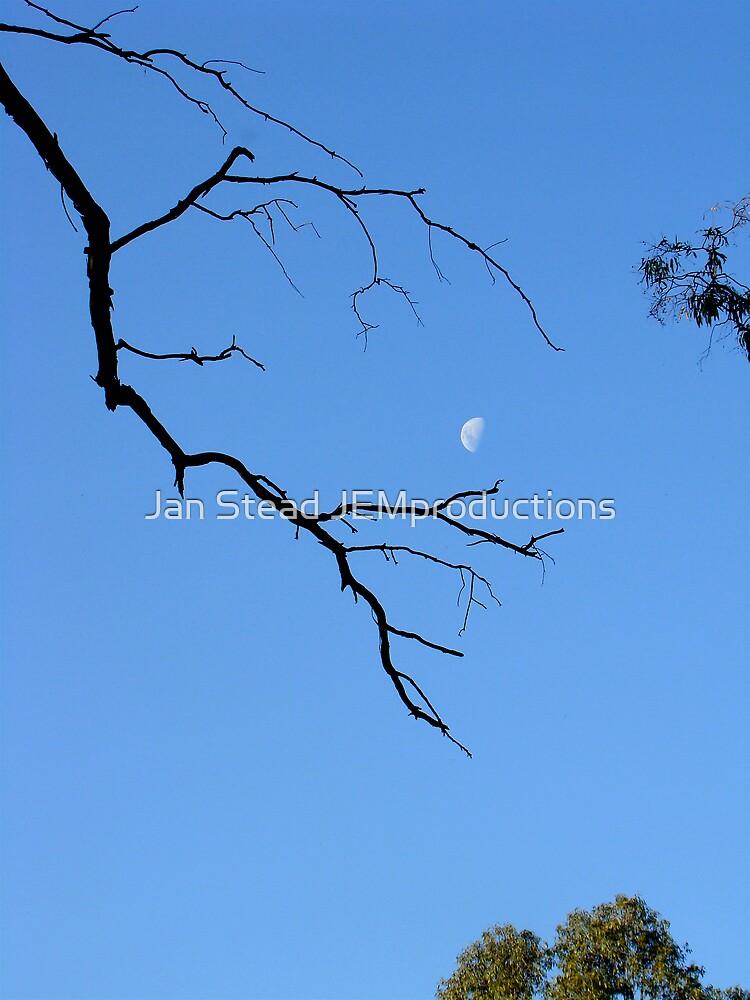 blue moon by Jan Stead JEMproductions