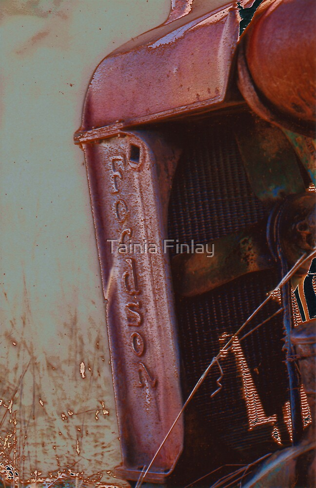 Fordson by Tainia Finlay