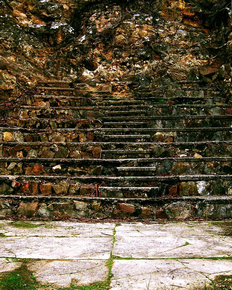 Stone Steps  by Daz Zammit