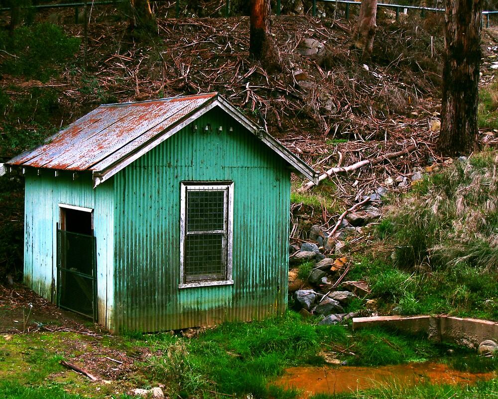 The Hut by Daz Zammit