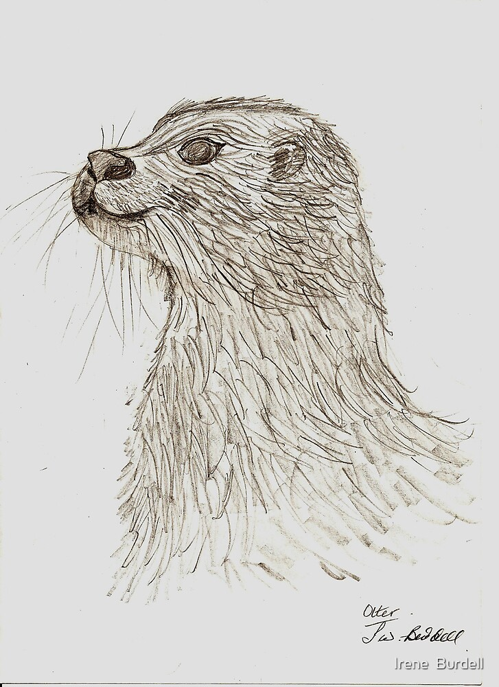 The Otter !! by Irene  Burdell