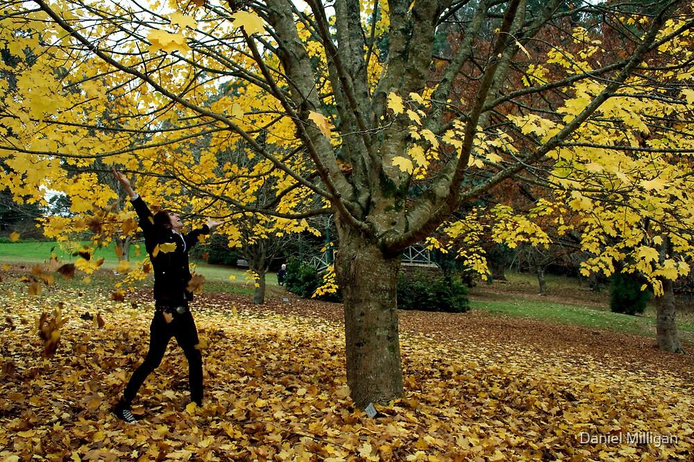 Autumn Freedom by Daniel Milligan