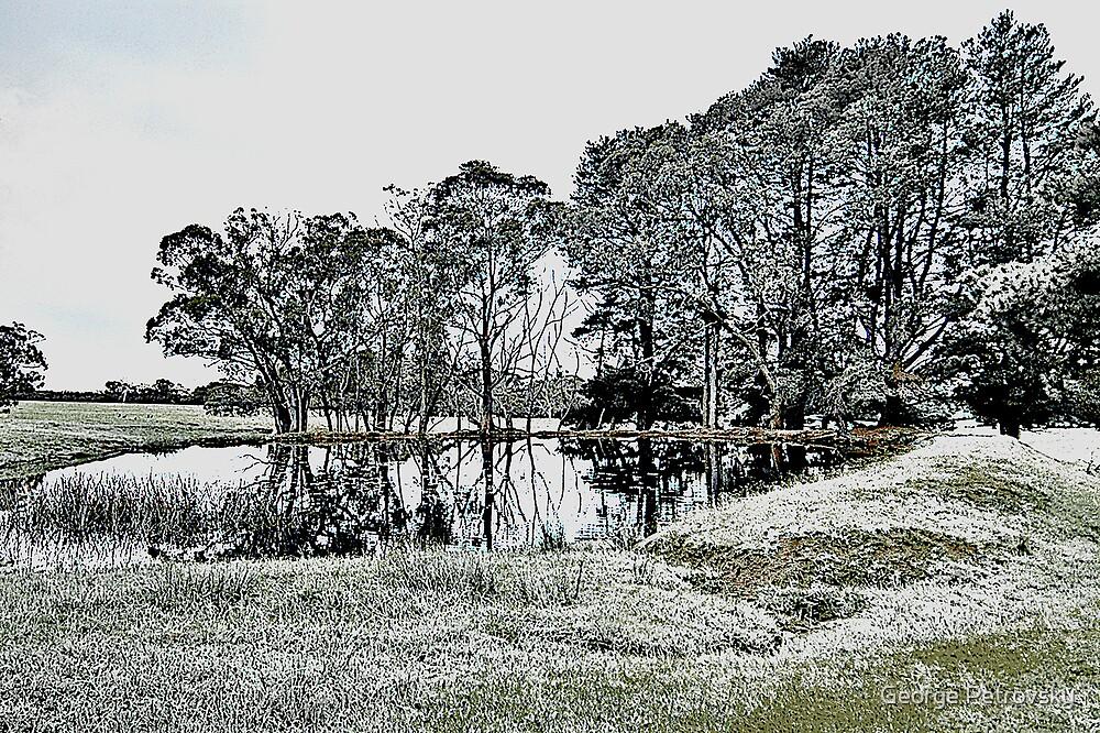 Frosty Pond by George Petrovsky