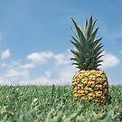 Pineapple by yelly123